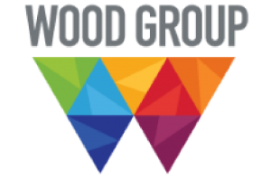 https://mwservicesinc.com/wp-content/uploads/2020/11/Wood-Group-Logo-01-300x197.png